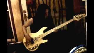 level 42 mr pink bass cover by rinner guts
