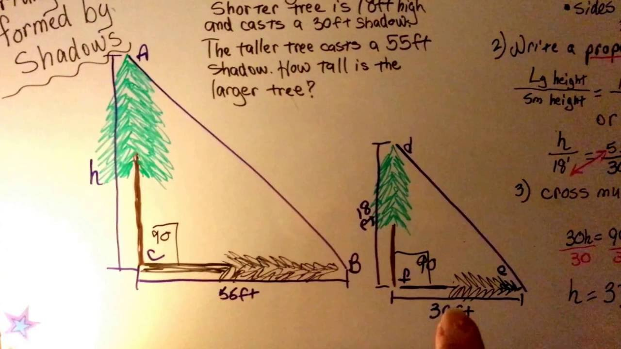 Find Height By A Corresponding Shadow Intro Geometry 15
