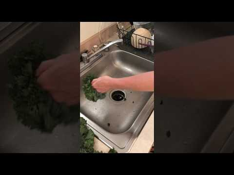 Pro Kale Cleaning