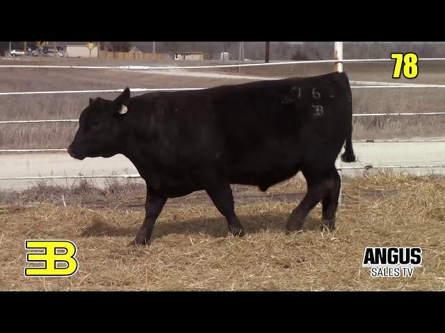 Benoit Angus Lot 78