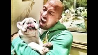 dwayne johnson his dog - the rock his bull dog
