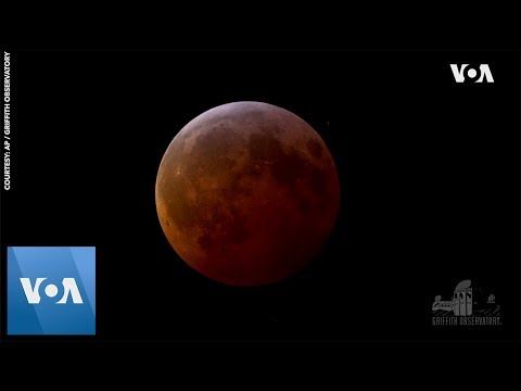 Marc 'The Cope' Coppola - Super Blood Moon Lunar Eclipse From This Week