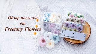 Обзор посылки с цветами Freetany Flowers