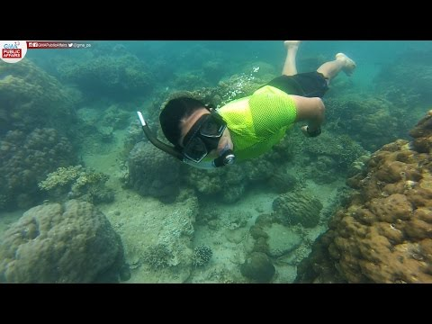FULL EPISODE: Drew Arellano explores Narra, Palawan