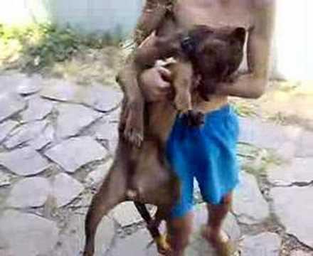 Dog zoo porno köpek kızı sikiyor  Maçka Porno HD sex izle