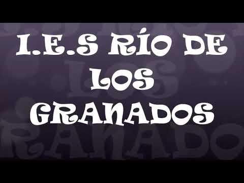 CONTRA LA VIOLENCIA DE GÉNERO (I.E.S. RÍO DE LOS GRANADOS)  {GUARROMÁN}