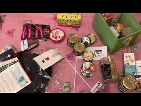Покупки и подарки с выставки Евразия