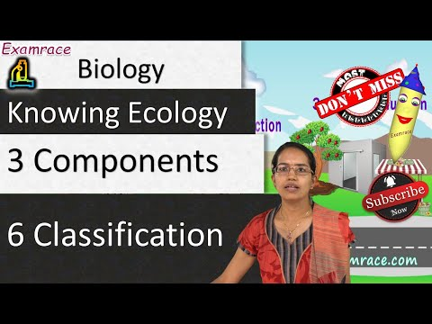 Knowing Ecology - Its 3 Components & 6 Classification of Ecosystem