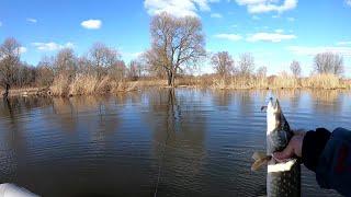 Щука НЕ Даёт Уехать с озера Ловля щуки весной 2020 Рыбалка на щуку весной 2020 Спиннинг 2020