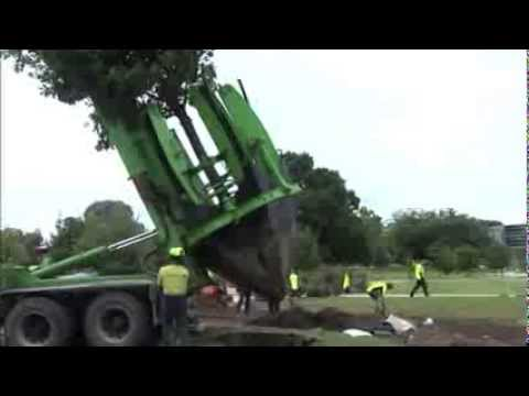 Tree Relocation Machine-  Awesome