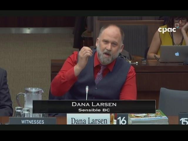 Dana Larson C 45 Testimony