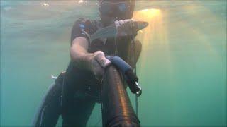 видео подводной охоты на черном море