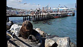 PORTO SAN ANTONIO| Valparaiso