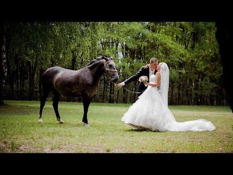 Enikő & Tibi Wedding Highlights