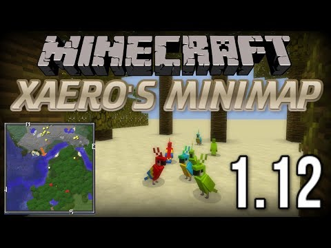 How To INSTALL Xaero's Minimap Mod (With Forge) [Minecraft 1.12+]