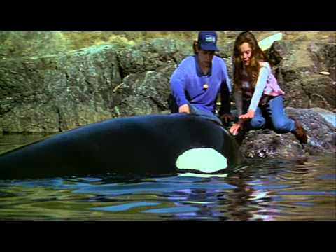 Trailer do filme Free Willy