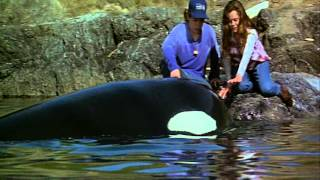 Free Willy 2 (1995) trailer.