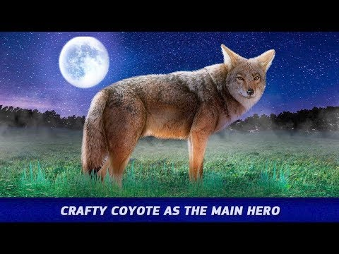 Coyote Simulator - Wild Wolf Life-By My Pocket Animals Studio-Android