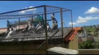 visita a casa do Mauro zuim Bh Mg parte 1