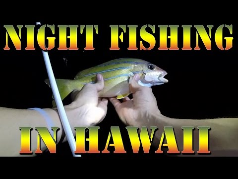 Night Fishing for Invasive Taape (Blueline Snapper) In Hawaii - Big Island Fishing -  B.O.D.S. 18