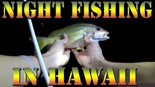 Night Fishing for Invasive Taape (Blueline Snapper) In Hawaii - Big Island Fishing -  B.O.D.S. 18