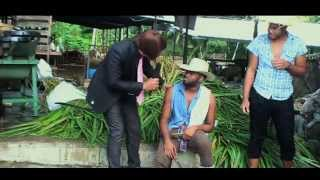 Rodey Bling   Pigtail Official Music Video Soca 2015