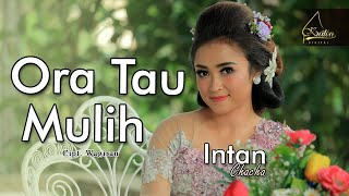 Intan Chacha - Ora Tau Mulih ( Official Music Video )
