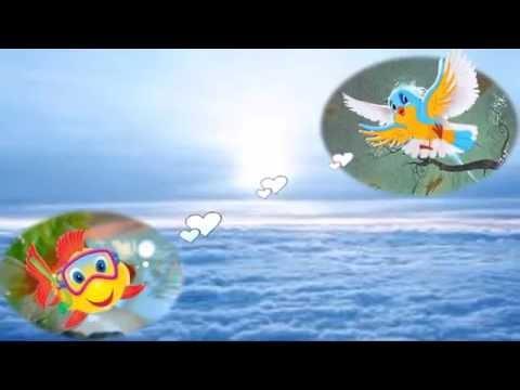 Nicole valerie un petit poisson un petit oiseau for Un petit oiseau