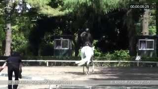 2014/06/14 31. Tokyo Pferdschau. JEF Dressurprüfung der Klasse A2, ...