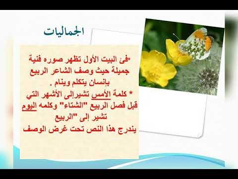 قصيدة الربيع الصف السابع - YouTube