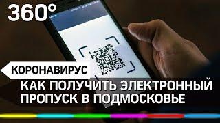 Электронный пропуск в Подмосковье: инструкция по получению