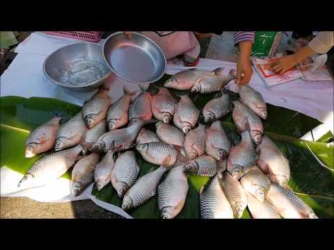 Asian street food vdo in tha uthen market - amazing thai food