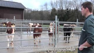 Visite de l'exploitation de Kevin Curchod, éleveur de veaux à Naz (VD)
