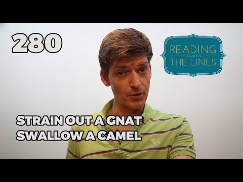 Reading Between the Lines 280 - Strain Out a Gnat Swallow a Camel