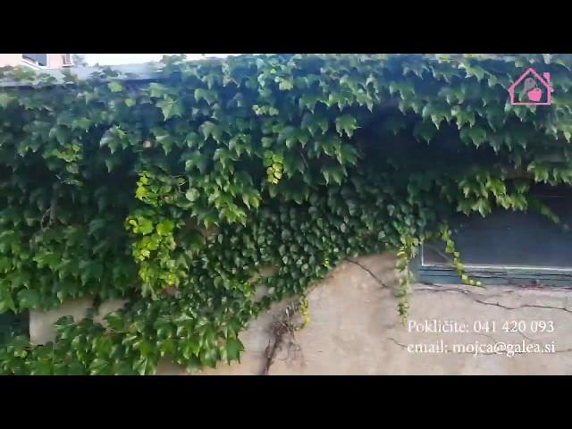 Vrstna hiška, Medvedova ulica, Maribor, gsm 041/420-093