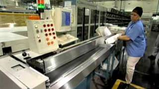 Postal Service Mail Sorters, Processors and Processing Machine Operators