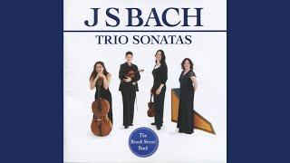 Trio Sonata in D Minor, BWV 527: III. Vivace