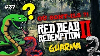 #37 BOAS DE GUARMA : OÙ LES CHASSER ? RED DEAD REDEMPTION 2
