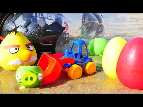 Развивающее видео Angry birds птички на пляже: машинки и пиратский корабль хрюшек. Игры для детей