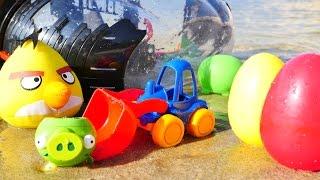 Развивающее видео Angry birds птички на пляже: машинки и пиратский корабль хрюшек. Игры для детей(Развивающее видео для детей с игрушками Маша Капуки Кануки и Птички Энгри Бердз (Angry birds) на пляже против..., 2016-10-10T04:42:18.000Z)