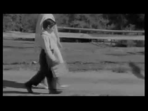 The Walk   Sawyer Brown