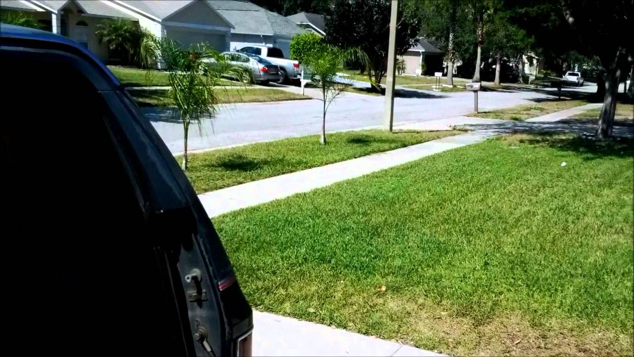 Suburban Tailgate Window Investigation