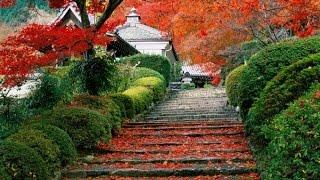 Sơ lược Nhật Bản
