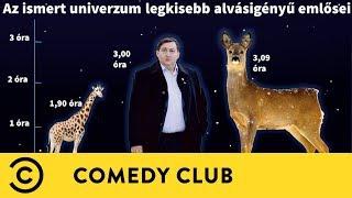 Mészáros Lőrinc vs. Mark Zuckerberg | Dumaaktuál | Comedy Club