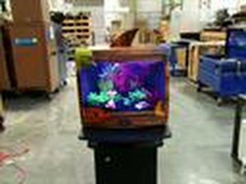 Reveal tv tank tanked youtube for Fish tank full movie