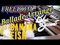 BANANA FISH 2 OP「FREEDOM」BLUE ENCOUNT extended TVsize