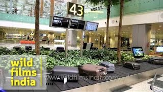 Baggage claim carousel at Changi airport in Singapore