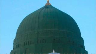 Zindagi Haqeeqat Mein Bas Usi Ne Pai Hai by Najeeb ur Rehman Naz