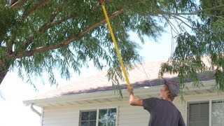 How to Make Money as a Kid- Part 3 Yard Work