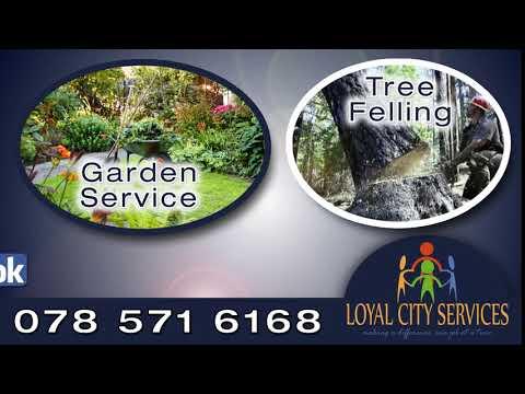 Loyal City Services Sept 17 3